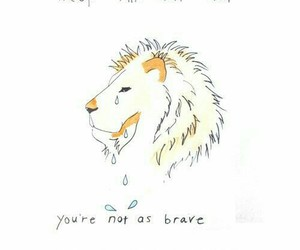 lion, brave, and mumford and sons image