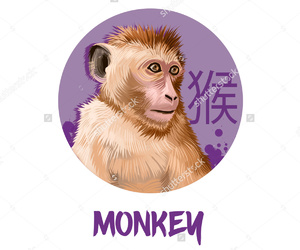 brown, monkey, and sign image