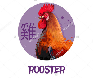 brown, red, and rooster image