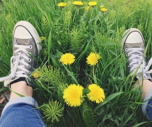 alternative, converse, and flowers image