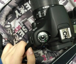 canon and 60d image