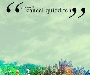 harry potter, quidditch, and hp image