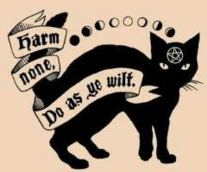 black cat, wicca, and witch image