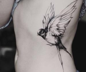 bird, original, and bird tattoo image