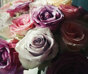 bunch, flowers, and roses image