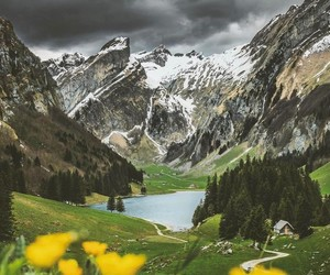 beauty, life, and mountain image