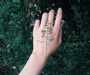 aesthetic, green, and hand image