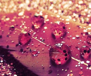 glitter, pink, and feather image