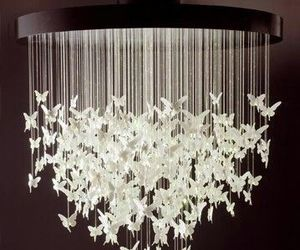 butterfly, chandelier, and light image