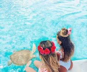 summer, turtle, and flowers image
