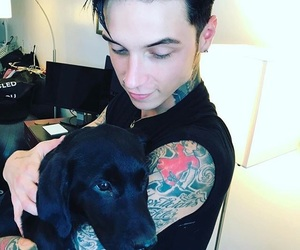 concerts, andy6, and andybiersack image