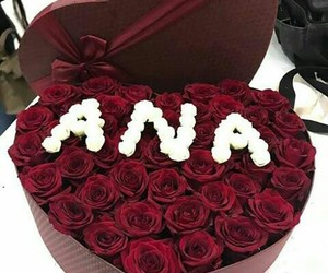 gift, roses, and surprise image