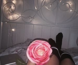 flower, spring, and tumblr image