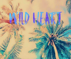 beach, heart, and wallpaper image