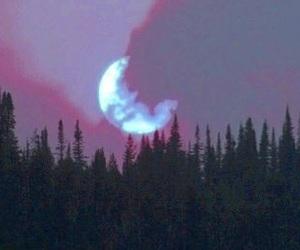 moon, alternative, and grunge image