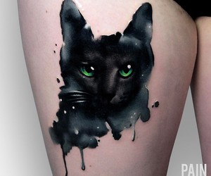 cat, inked, and splatter image