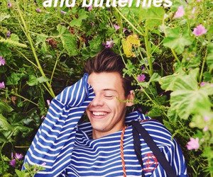 Harry Styles, one direction, and Lyrics image
