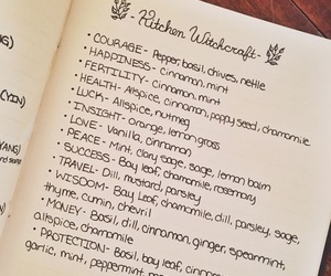 herbs, witch, and wicca image
