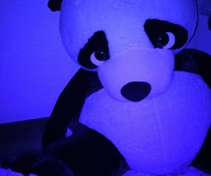 grunge, pale, and panda image