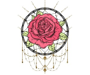 rose, rose flower, and роза image