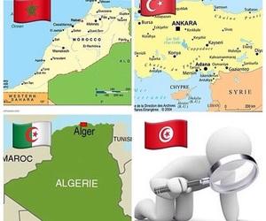 tweet, algerie, and turquie image
