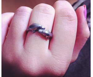 dolphin, finger, and nails image
