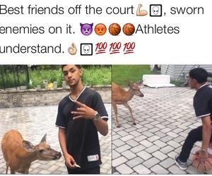 athletes, meme, and tumblr image