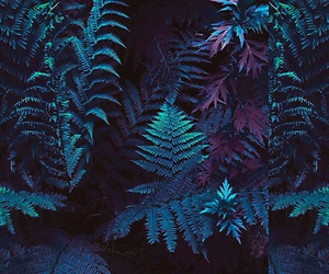 blue, plants, and wallpaper image