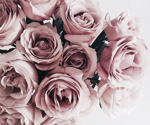 158 Images About Flowers On We Heart It See More About Flowers