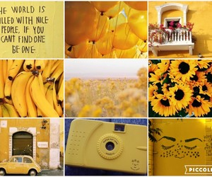 feeds, yellow, and themes image
