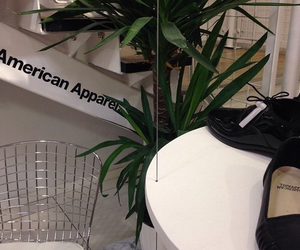 plants, grunge, and american apparel image