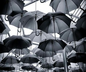 black and white, umbrella, and photography image