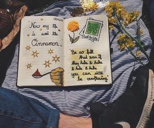 Cinnamon, diary, and flowers image