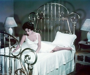 Elizabeth Taylor, actress, and Cat on a Hot Tin Roof image