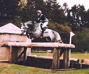 cross country, equestrian, and jump image