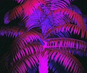 pink, purple, and light image
