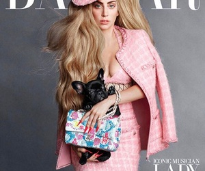 fashion, gaga, and ladygaga image