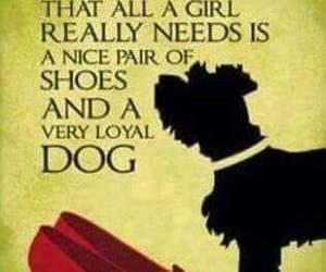 dog, dorothy, and all a girl really needs image