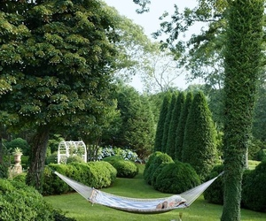 garden and hammock image
