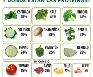 dieta and herbalife image