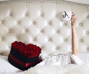 luxury life, morning, and roses image