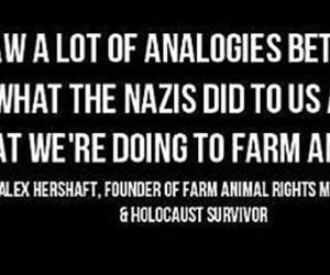 animal rights, cruelty, and vegan image