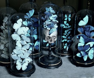 blue, butterfly, and grunge image