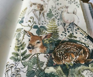 deer image