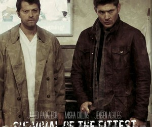 edit, spn, and survival of the fittest image