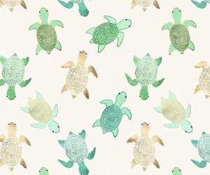 wallpaper, turtle, and background image