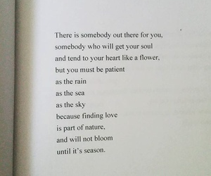 books, love poem, and poems image