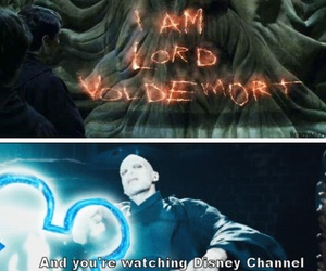funny, harry potter, and lord voldemort image