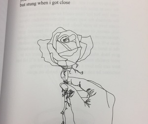 beautiful, book, and milk and honey image