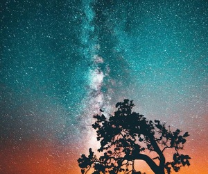 nature and stars image